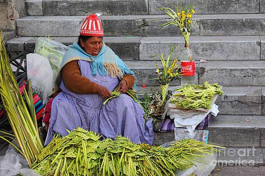 James Brunker - Palm Sunday Preparations