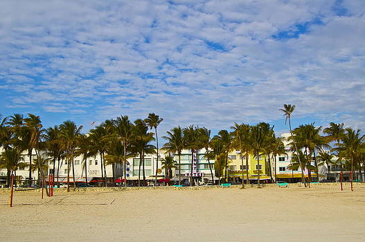Palm Trees on Ocean Drive by Galexa Ch