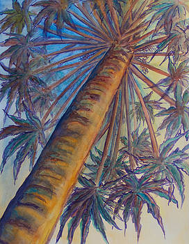 Patricia Beebe - Palm Up In St Kitts