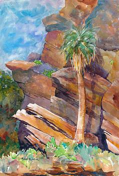 Palma Sola by John Ressler