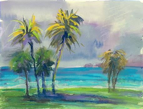 Palms at Kualoa Ranch by Jennifer Robin
