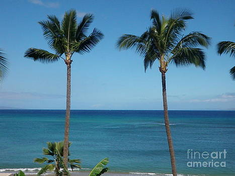 Palms In Maui by Dean Gribble