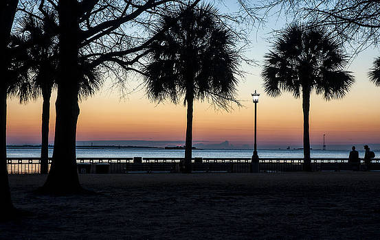 Palms over Sunrise by Allen Carroll