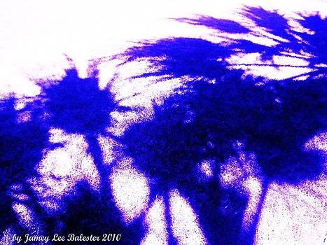 Palms Shaddow by Jamey Balester