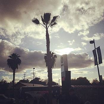 #palmtrees And #clouds #skies by Ann Marie Donahue