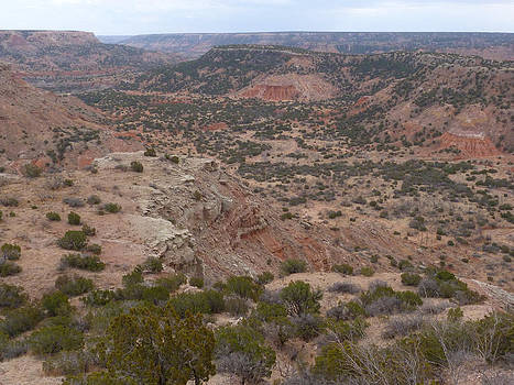 Palo Duro Canyon from the Top by Susan Porter