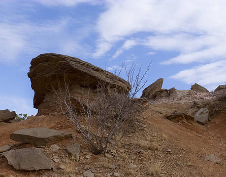 Palo Duro Rock by Susan Porter