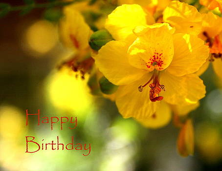 Palo Verde Birthday Greeting by Marna Edwards Flavell