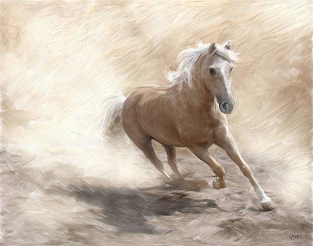Palomino Dust by Bethany Caskey