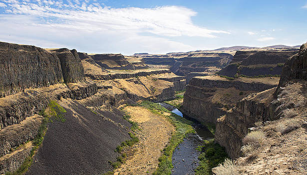 Palouse Canyon by Spencer Bodian