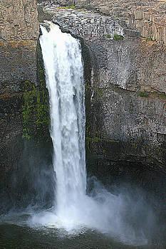 Palouse Falls 2 by Rich Collins
