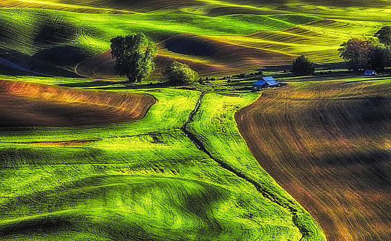 Palouse Glow by Ray Still