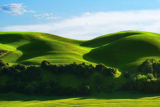 Palouse Wonders by Ryan Manuel
