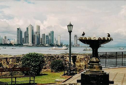 Panama Vista by Rollin Jewett