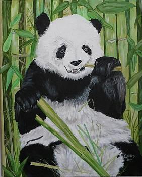 Panda by Loretta Orr
