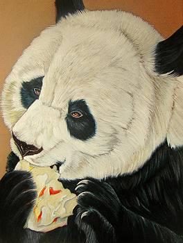 Panda Pop by Lea Sutton