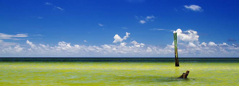 Fizzy Image - Panoramic view of Boca Grande Beach