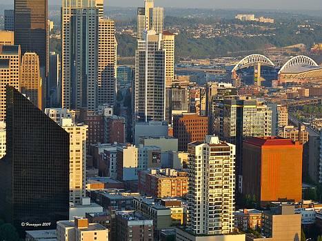 Hemu Aggarwal - Panoramic view of Seattle