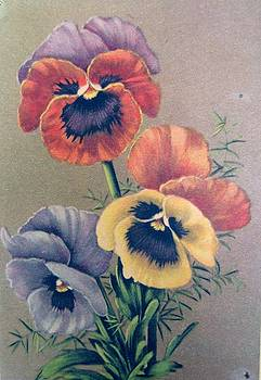 Pansies bouquet by Florinel Nicolai Deciu