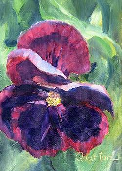 Pansy Face by Lori Quarton