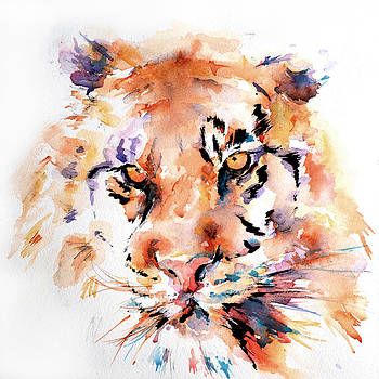 Panthera Tiger by Stephie Butler