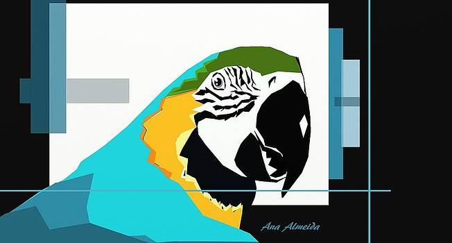 Papagaio by Ana Almeida