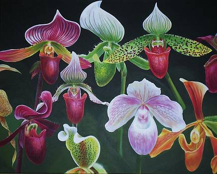 Paph Meeting by Bonnie Golden