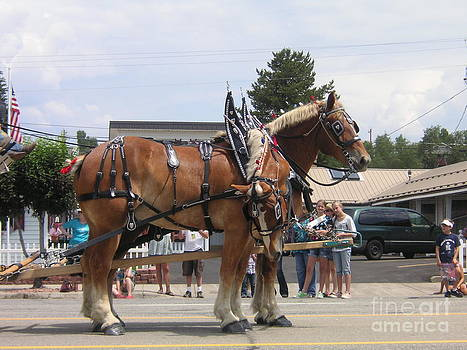 Parade Horses by Crystal Miller