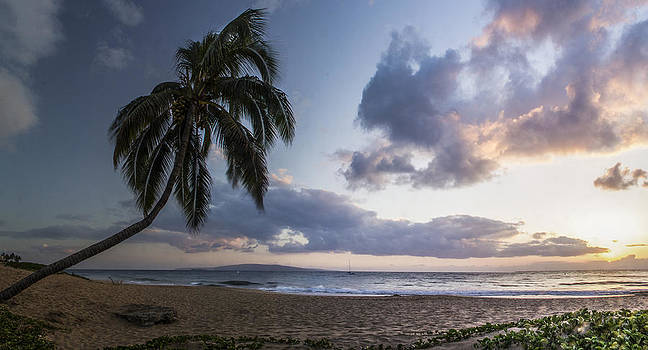 Paradise by Brad Scott