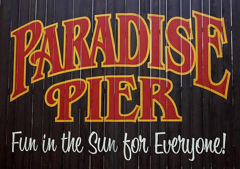 Paradise In The Sun by David Nicholls