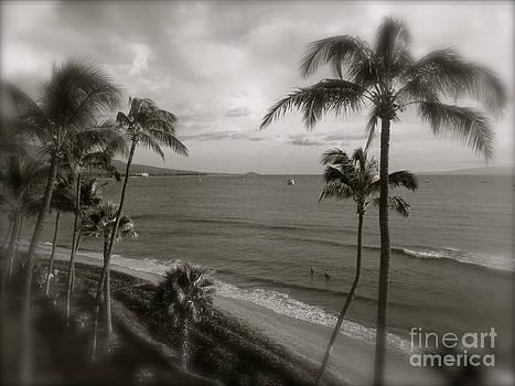 Paradise by Tina Hannaford