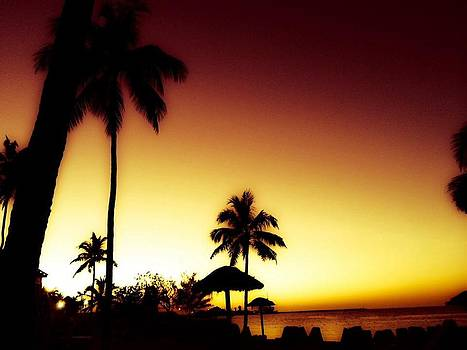 Paradise  by Toni Martsoukos