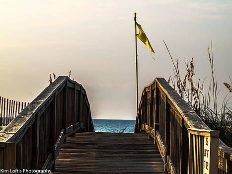 Paradise walk  by Kim Loftis