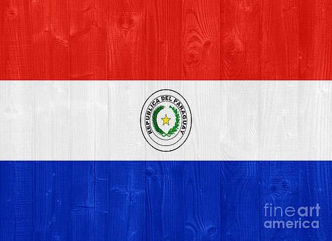 Paraguay flag by Luis Alvarenga
