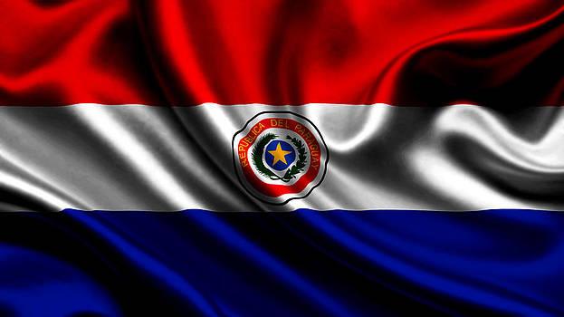 Valdecy RL - Paraguay Flag