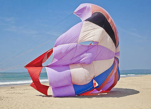 Kantilal Patel - Parasail catches the wind