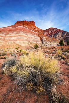 Paria Plateau by Russ Bishop