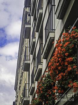 Paris flower boxes by Brian R Tolbert
