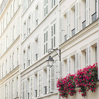 Paris in Pink by Irene Suchocki