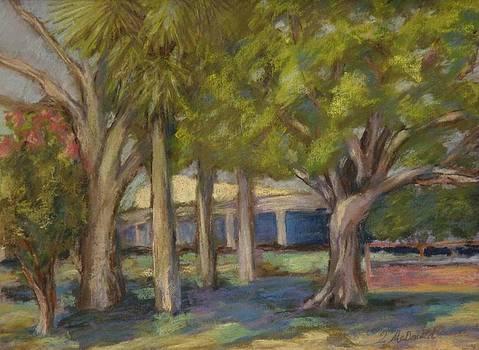 Park Apalachicola by Tricia Mcdonald