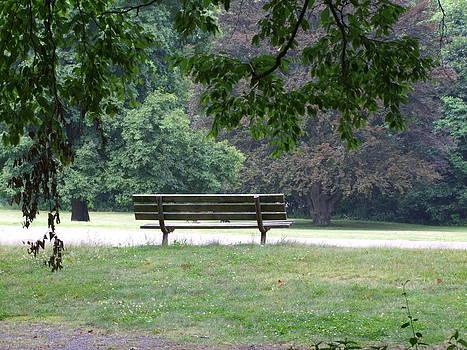 Angela Hansen - Park Bench in Summertime