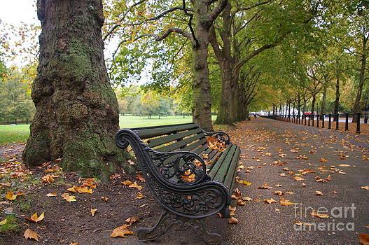 Park Bench  by Mary Barrett