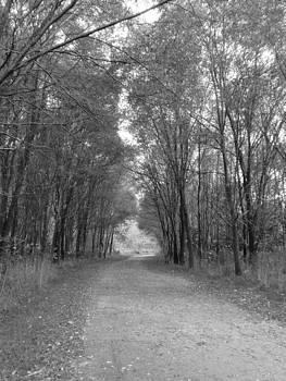 Park Path by Karolina Olszewska
