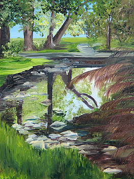 Park Pond Reflections by Jane Autry