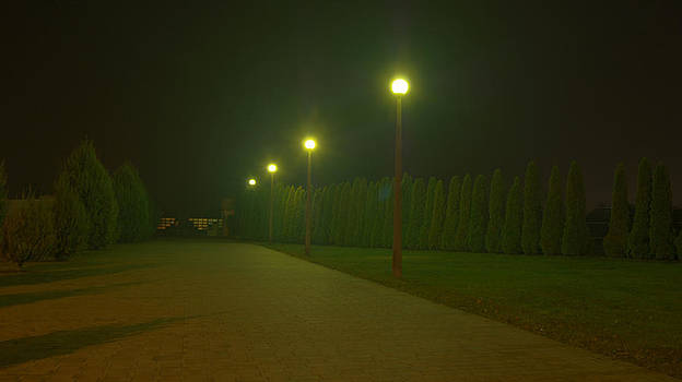 Peter Kallai - Park sidewalk by night