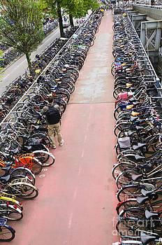Oscar Gutierrez - Parked Bikes