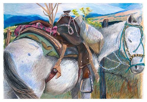 Parked Pony by David Phoenix