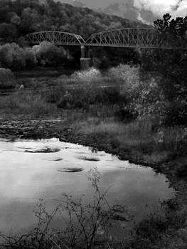 Parker Bridge by Joyce  Wasser