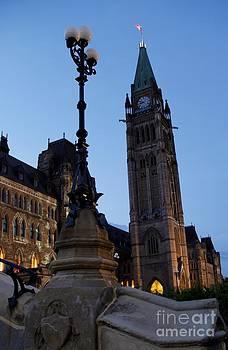 Parliamental Night by Jeff Sommerfield