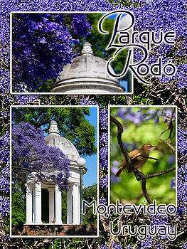 Parque Rodo by Blair Wainman